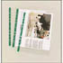 Punched Pockets A4 65 micron Clear Top-Opening Green Strip KF01121 (Pack of 100)