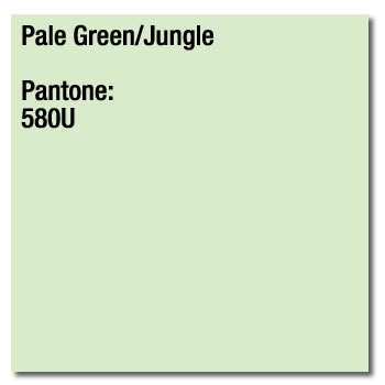 A3 80gsm Pale Green Paper 500 sheets (Jungle) Image Coloraction 580U